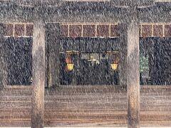 やけのやんぱち南国の雨 《 宮崎県・宮崎神宮ほか 》