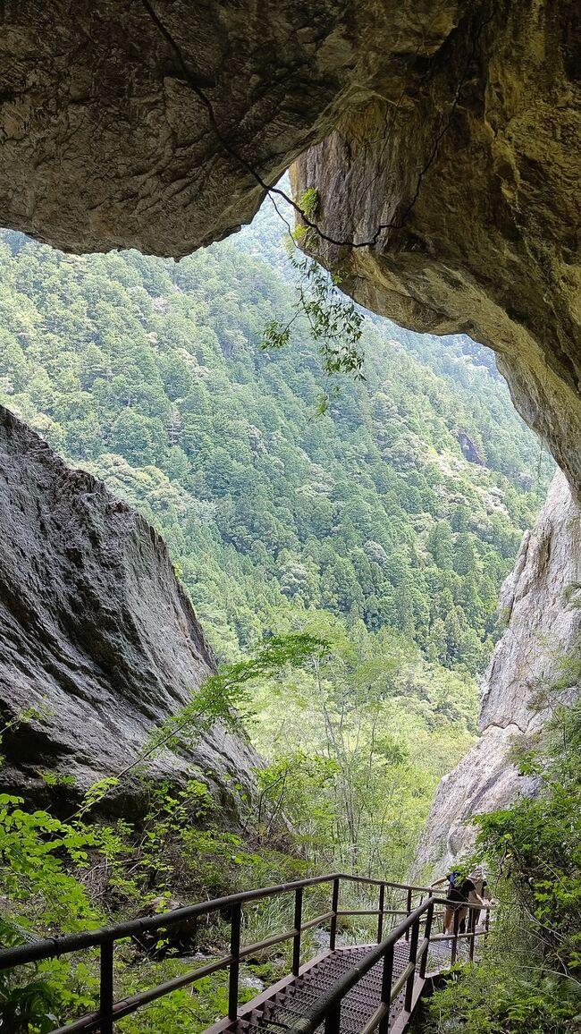 「乳岩峡は、訪問者を一日探検隊長に任命してくれる」<br />「乳岩峡を歩けばアジアの絶景を次々と目にするだろう。桟敷岩の青い水たまりは九寨溝(中国)、垂直に近いはしごは劔岳のカニのタテバイ(富山県)、通天門は張家界の天門山(中国)、乳岩洞窟はバトゥ洞窟(マレーシア)だから」<br /><br />というのは私ナーザが勝手に作り上げた言葉。特に後者のセリフに出てくるスポットは1ヵ所も訪問したことがなく、根拠のない独りよがりのイメージです。訪問者の皆様方、お許しください。<br /><br />さて、愛知県の奥三河にこれほどのスポットがあるとは。インスタ映え間違いなしです。若者が多かったのもうなづけます。妻と小6の娘と回りました。10時半に出発し、3時間かかりました。物凄くしんどいです。でも、絶景の連続です。あなたはどちらを選びますか?