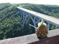 キューバ7日間の旅(10)パグナヤグア橋を渡ってハバナへ