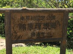 勝浦朝市の後、鵜原理想郷ってどんなところか確かめに行きました。