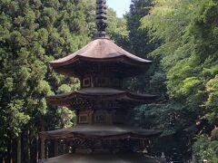 JR東日本・週末パスで群馬・長野へ(前半)