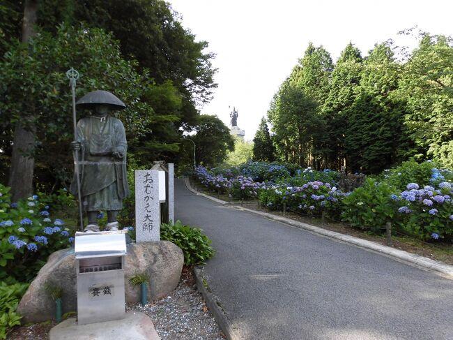 1年遅れのオリンピックの休暇を利用して2泊3日のお遍路です。<br />まず 香川から逆打ちで観音寺まで そして高知から愛媛までの順打ちをしました。<br /> 早くから始まった夏本番!日差しは強くても涼風です。<br />このところ出来なかった松山市内も 無事にクリアしました。<br /><br />~写真の説明~<br /> 66番札所 おむかえ大師と紫陽花<br /><br />~おまけ~<br /> 私たちシニアもコロナワクチンを2回接種して決行しました。<br /> コロナ禍前のように人出が多く 夏休みに入った家族連れの姿が目立ちます。 <br /> ワクチンの遅れが心配です。