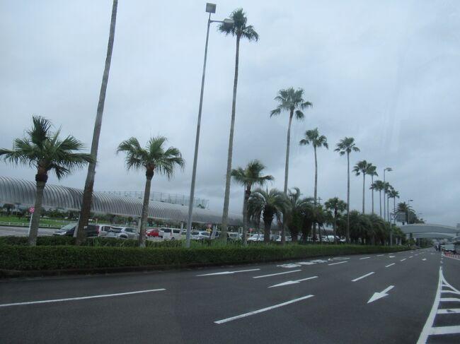3月の秋保温泉からGWは何処へも行かず、7月の連休に家族3人で宮崎県シーガイアのシェラトン・グランデ・オーシャンリゾートに2連泊して来ました。<br /><br />最初の計画では、宮崎うどんを食べてみたくて、手っ取り早く宮崎空港の保安検査場内のショップで食べてから、直接、空港からホテルへ直行のバスで移動しようと考えてました。<br />が、例のアイツのせいでフライトが減便になったり、バスが運休になったりしているので、旅行日が近づく中、ホームページをチェック。<br />特に、我家は3人ともペーパードライバーなので空港からホテルまでの移動方法が問題。通常だったら土日祝は空港からホテルまでの直通バスがあるのだけど、当面の間運休となっていて、夏休みに再開されないか期待したけどダメでした。<br /><br />さあ、ホテルまで道中はどうなることやら。<br /><br />
