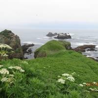 道東の旅 2日目は釧路から海沿いに岬を廻り本土最東端を目指します 夜は尾岱沼の温泉へ