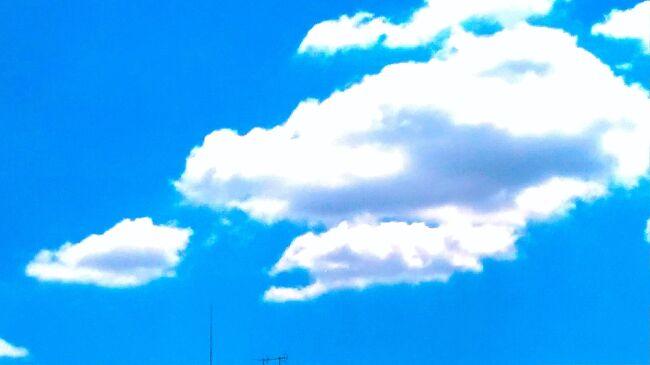 家の近所でブルーインパルス見れるなんて最高じゃん!<br /><br />これがとっても私には難しかった・・・<br />余りにも下手くそ<br /><br />一瞬過ぎて・・・