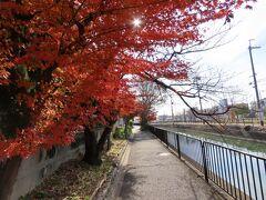 京都 琵琶湖疏水 鴨川運河2(Kamogawa Canal, Biwako Canal, Kyoto, JP)
