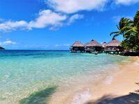 【タヒチ~ボラボラ島】南太平洋の薬園