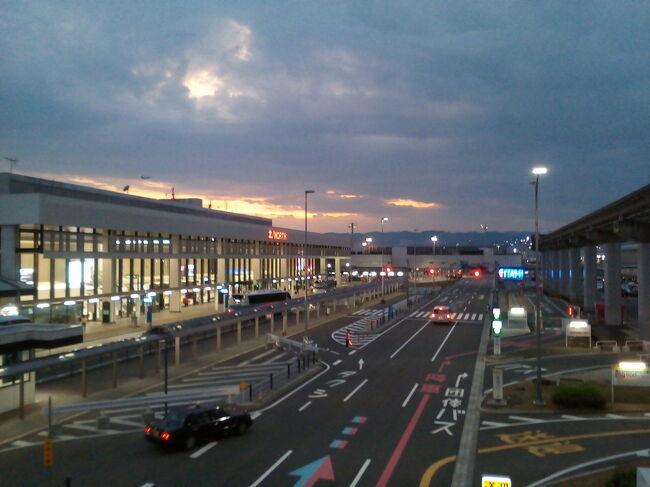 蔓延防止から緊急事態へ移行の前日に大阪へ行って来ました。出発地羽田空港は夏休みが始まって、家族連れがドット繰り出した感じです。コロナ期間中のいつものパターンで、空港&ホテル滞在旅です。伊丹空港前で唯一大浴場のあるグリーンリッチ宿泊。