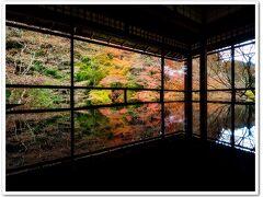そうだ京都、行こう。紅葉シーズンの。が、しかしピーク過ぎ・・・な3日目。 清水寺、瑠璃光院などを観光。