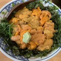 初めての島根旅行 その7 土砂降りの中ウニ丼食べに日御碕へ行ったけど現金使えなくて大ピンチ!