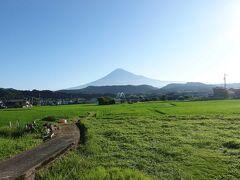 自転車でGO!早朝バージョン&ポタリング =富士市内(9)=2021.07.17