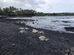 ハワイ旅行 ハワイ島