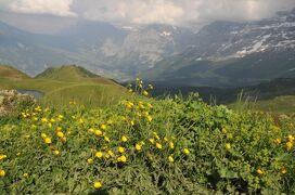 2013年スイス旅行記 第10回 ユングフラウ散策 メンリッヒェンからクライネシャイデックまでハイキング