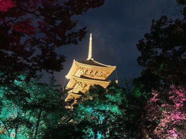 長雨が続き、予定していた旅行が交通の関係で行けなくなってしまった!夏の旅行の台風など天候で左右されるのは仕方ないですね。。。近場で何かないか探していたら、東寺でチームラボが光の祭やってる(OvO)!キレイでとてもよかったです。