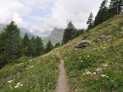 2013年スイス旅行記 第15回 マッターホルン散策 スネガから花咲くハイキングコースを歩く