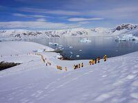 南極大陸上陸を楽しむ(動画)