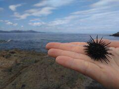 間人で海にちょっとちゃっぽん、久美浜でスムージー