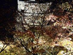 京都の夜を散歩、、、紅葉ライトアップ