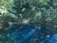 6・8歳連れ、白神山地&津軽半島週末旅行