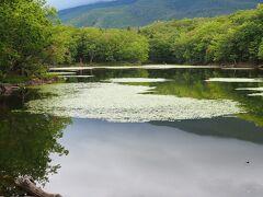 2021年夏の北海道☆知床2日目は知床五胡と原生林ツアーへ