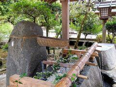 花と水の京都 世界遺産 上賀茂神社の涼やかな花玉手水2021
