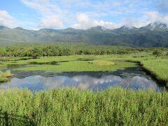 北海道の旅のハイライトは 知床高架木道!道東の大自然は何よりも心を癒してくれました。