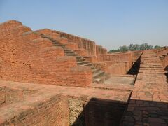 インドの仏跡巡礼(4) 釈尊が晩年に立ち寄った地、ナーランダで仏教大学の遺跡を見学
