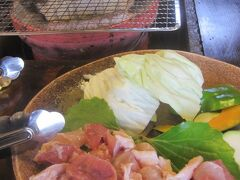 2018 初めて宮崎に行った初日は地鶏食ったりほたる祭りに行ったりしました!