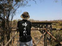 噂の「アフリカ・オーバーランドツアー」に参加してみたさ…その18 ワンゲでサファリ&ビクトリアフォールズ