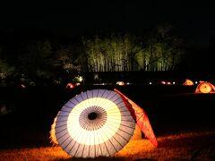 後楽園のライトアップと岡山城