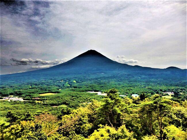 苔が好きなので樹海をハイキングして山梨名物ほうとうの生麺を買いにドライブがてら行ってきました。<br />いつも何気なく見ていた富士山みる場所と時間によって色々な姿を見せてくれます。