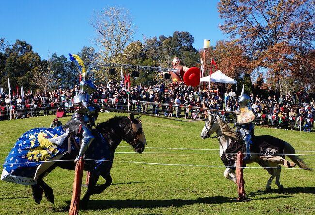 シドニー・ブラックタウンの中世の騎士祭り(メディーバル・フェスティバル)です。中世からルネサンス(11世紀-16世紀)頃のヨーロッパ文化を現在に再現しています。当時ヨーロッパで流行した騎士道である馬上槍(ジョスト)などが競われます。ヨーロッパ各地では中世の騎士フェスティバルは頻繁に開催されるメジャーなイベントです。オーストラリアにはヨーロッパ中世の歴史はありませんが、ヨーロッパからの移民が多いので、騎士道文化は地球の裏でも引き継がれています。日本で言うと侍祭り(関ケ原合戦祭り・謙信公祭など)という感じでしょうか。<br /><br />今振り返れば、2021年5月がノーマスクの大規模イベントができる最後の時期でした。当時シドニーは何ヶ月間もゼロコロナで、このまま大きな制限なくコロナ禍を乗り越えられそうな楽観論がありました。しかし翌6月にデルタ株がシドニーに持ち込まれ、2ヶ月間のロックダウンに失敗して、シドニーのNSW州はゼロコロナを断念しました。マスクなしイベントが再開するのは遠い先になりそうです。
