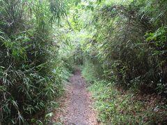 北鎌倉にこんな山道が!「鎌倉アルプス(天園ハイキングコース)」を歩く