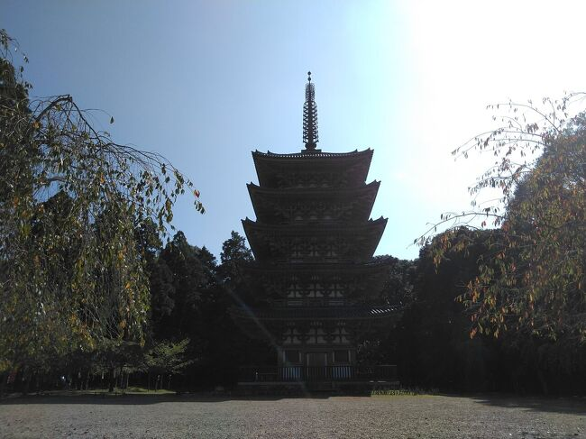 醍醐寺あたりで業務があったので、せっかくなので、朝イチの人気がまだまだの醍醐寺に入りました。五重塔が美しい。三宝院の庭も美しい。<br />そのまま、長尾天満宮に向かいます。天満宮ということは、そうです菅原道真公が祀られています。108段の階段を登って参拝してきました。<br />2件の業務を終えてから、せっかくなので、マニアックなルートから牛尾観音を参拝してきました。<br />その帰り、こんなところにというところに十割蕎麦を食べさせてくれるお店がありました。食べ終わってから、お庭を散歩。<br />休日業務のついでと言いつつ、いろいろ楽しめました。