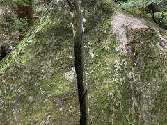 鬼滅の刃足利名草厳島神社の旅