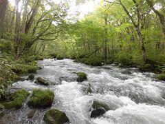 奥入瀬渓流は歩かないと勿体ない@青森県