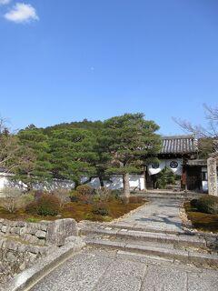 筍買いに京都まで。筍までは遠かった
