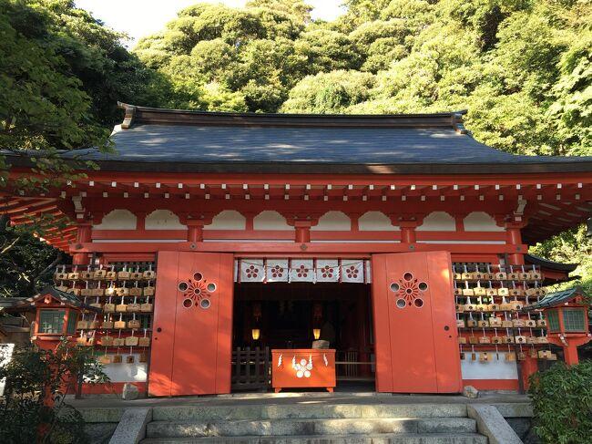 青山美智子さん著の「鎌倉うずまき案内所」。<br />この小説は、双子のおじいさんとアンモナイトが待っている不思議な案内所が舞台です。<br /><br />架空の場所も多いですが、実在の場所も登場するので、読んでいるうちに鎌倉に行きたいなーと思い立ちました。<br />今回の散歩では、小説に出てきた鶴岡八幡宮や小町通り、荏柄天神を巡ります。<br />私も鎌倉うずまき案内所に迷い込んでみたいなーと思いながら…。<br />