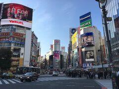 【東急沿線の丘を巡る旅】(1) 渋谷
