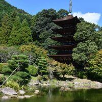 なんとも優美な瑠璃光寺様五重の塔