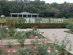 神代植物公園の秋バラやダリアなどと,隣接の深大寺