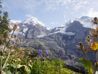 スイス・アルプスを巡る・ユングフラウ周辺(動画)