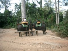 17:05 プノン・バケン  夕陽観光で有名な「プノン・バケン」へやってきました。 象に乗って登ることができるみたいです。 料金は登り$15(1人)で下りが$10(1人)とのことでした。