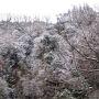 九州縦断の旅◆激走!京都発2650Km 【九重夢大吊橋編】