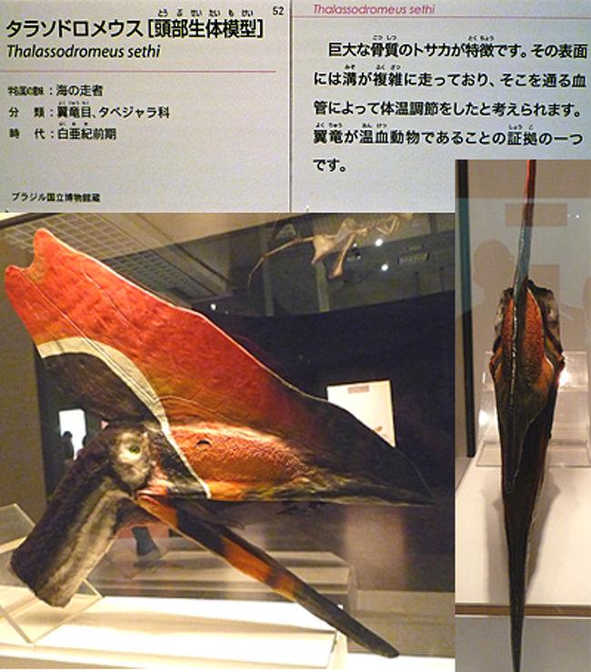 東京散歩 ~上野で大恐竜展