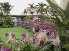 ナニ マウ ガーデン
