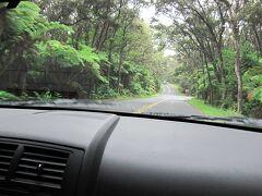 「ハワイ島旅行⑤ キラウエア火山 ~ チェーン・オブ・クレーターズ・ロード」の続きです。 http://4travel.jp/traveler/gensan/album/10362664/  クレータ周回道路(Crater Rim Road)に戻ってくると、真っ黒な溶岩原から緑が生い茂るジャングルに風景が変わります。  ハワイ火山国立公園を出て、11号線でヒロ(Hilo)方面に向かいます。