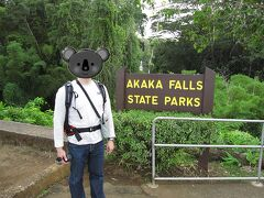 19号線(Mamalahoa Hwy.)をドライブしながら北上します。 Akaka Falls の看板がある信号を左折し、看板を頼りに今度は右折します。この道であっているの?と思いながら坂道を進んでいきます。その道の行き止まりがアカカ・フォールズ州立公園の駐車場でした。