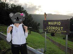 ワイピオ渓谷展望台(Waipio Valley Lookout)に到着しました。  この展望台にある駐車場は、数台分しか車を停める場所がありません。夕方ということもあり、余裕で停めることができました。ラッキー!