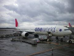新千歳空港にいた oneworld特別塗装機